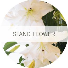 STAND FLOWER