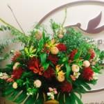 たくさんの開店、開業にお祝いのお花をお贈りしてます‼︎