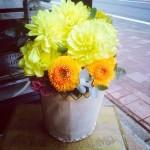 お誕生日のお花。レモンイエローのダリアがかわいい!