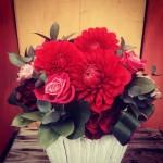 こちらも赤い花。冷たい空気に赤さが増して行く。