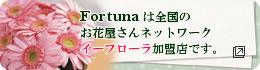 Fortunaは全国のお花屋さんネットワークイーフローラ加盟店です。